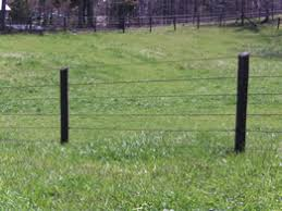 Polyplus Htp A Polymer Coated High Tensile Fence