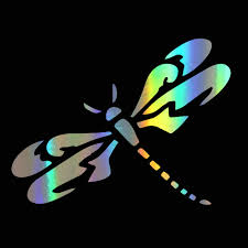 Car Sticker Vinyl 19 14 4cm Dragonfly Car Sticker And Decal Window Car Sticker On Car Styling For Auto Products Car Accessories Car Stickers Aliexpress