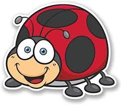 Amazon Com Ladybird Ladybug Vinyl Sticker Decal Laptop Car Bumper Sticker Travel Luggage Car Ipad Sign Fun 5 Automotive