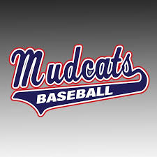 Mudcat Window Decal Design It Apparel