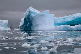 antarctica, antarctic peninsula, cierva cove, polar, expedition ...