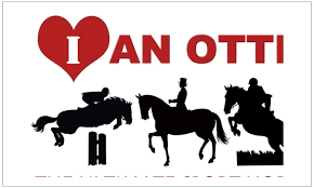 Amazon Com Cafepress Ottb The Ultimate Sport Horse Rectangle Bumper Sticker Car Decal Home Kitchen