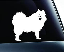 Amazon Com Samoyed Dog Symbol Decal Paw Print Dog Puppy Pet Family Breed Love Car Truck Sticker Window White Kitchen Dining