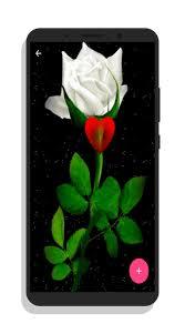 احلى الورود والازهار المتحركة For Android Apk Download
