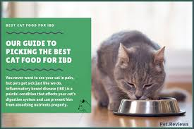 10 best wet canned cat foods for ibd