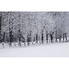 Posterazzi Dpi12268165large Snow Covered Trees Along A Fence Field In Winter Bromont Quebec Canada Poster Print 38 X 24 In Large Walmart Canada
