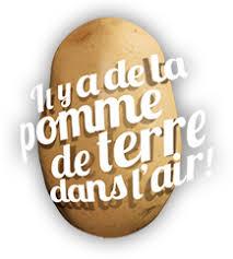 Production de la pomme de terre : Les différentes étapes - CNIPT