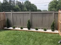 White Stone Garden Along Backyard Fence Little Giant Globe Cedars And Emerald Cedars Backyard Fences Outdoor Backyard Backyard Landscaping