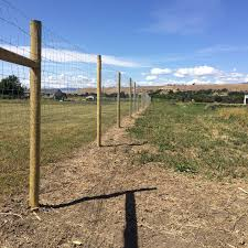 New 8 Foot Deer Fence Around Our Thorp Farm Usually Deer Don T Like Dahlias But If They Re Hungry Enough They Ll Eat An In 2020 Deer Fence Instagram Dream Garden
