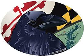 Baltimore Raven Oval Window Decal 6x4