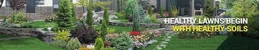 liquid lawn fertilizer natures lawn