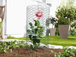 Chicken Wire Garden Fence Material Protects Your Plants