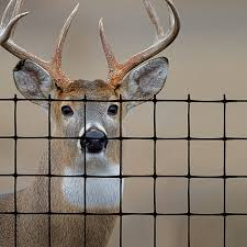 Deer Fence Elk Fence Farm And Ranch Tenax
