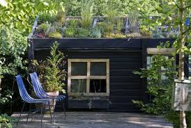 how to grow a roof for your garden shed
