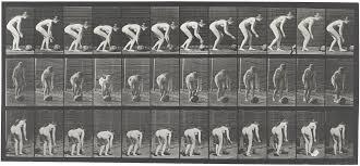File:Eadweard Muybridge Locomotion 442 1887.jpg - Wikimedia Commons