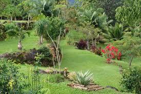 kauai s natural beauty travel guide on