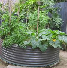 how to grow veggies with limited space