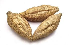 arrowroot powder facts uses health