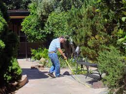 st pauls biblical garden on tour
