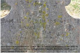 Amelia Rosina Brooks, (C. 1864 - 1887) (c.1864 - 1887) - Genealogy
