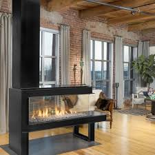modern gas fireplace gallery european