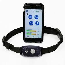 High Tech Pet Bluefang 5 In 1 Electronic Fence Remote Trainer Bark Collar Bf 30 The Home Depot