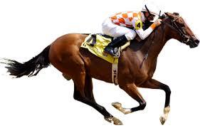 cheval course
