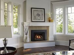 gas fireplace insert this is