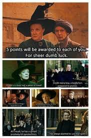 reasons why professor mcgonagall is the absolute best harry