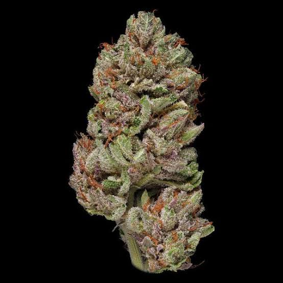 Image result for Bubba Kush""
