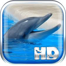 dolphins live wallpaper hd android