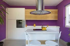 30 Purple Kitchen Ideas Photos