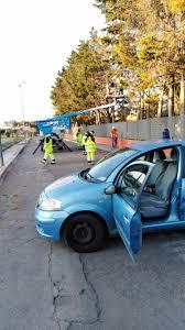 Cellino San Marco: la Protezione civile abbatte alberi pericolanti