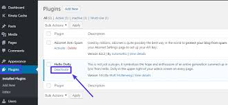 how to disable wordpress plugins no