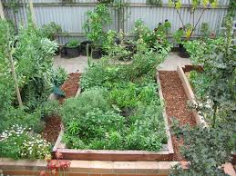 raised garden beds deep green