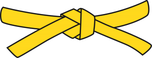 Resultado de imagen de cinturones de judo