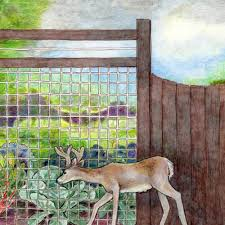 How To Keep Deer Out Of A Garden Bonnie Plants