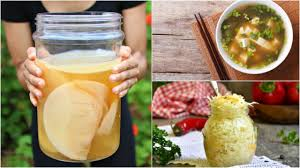 homemade probiotics my top 5