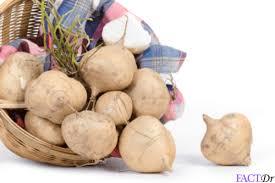 jicama plant root recipes