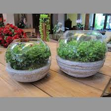 home accesories concrete glass bowl