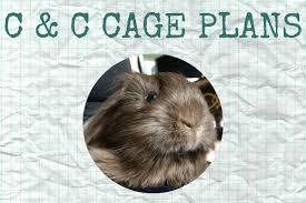 guinea pig c and c cage plans diy