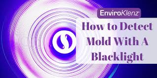 how to detect mold with a blacklight