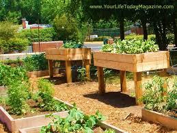 tall raised garden bed plans kmkk info