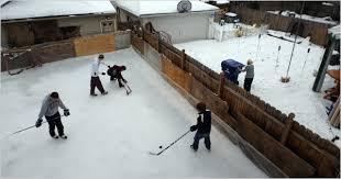 ice hockey rinks bee backyard