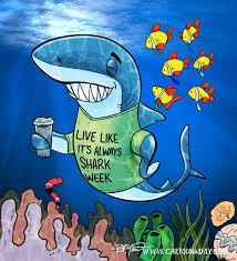 funny shark week cartoon cartoon