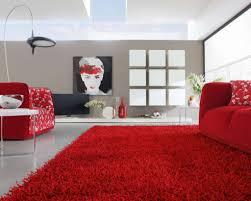 oriental area rug cleaning nashville