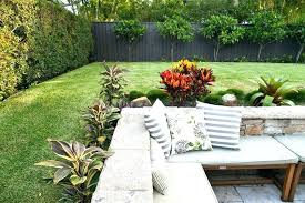 landscape patio small tropical plants