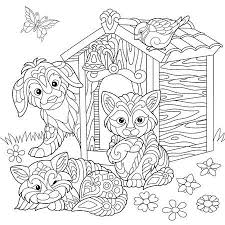 Kleurplaat Van Keizerpinguinen Ijsberen En Meeuwen Freehand