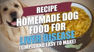 homemade dog food for liver disease