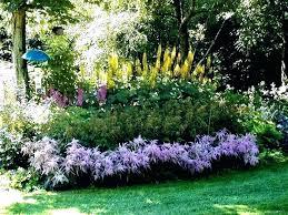 full sun perennials zone 7 flowering